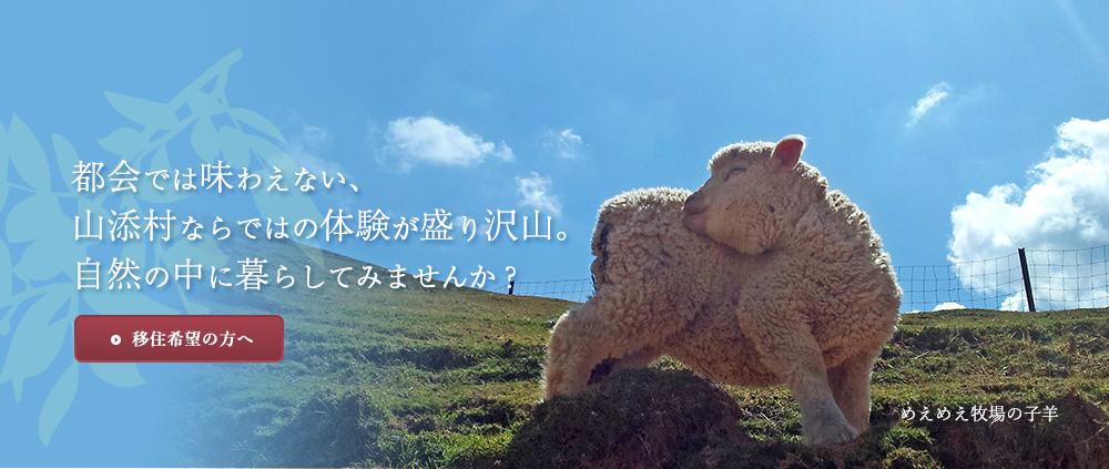 都会では味わえない山添村ならではの体験が盛り沢山。自然の中に暮してみませんか?
